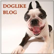 DOGLIKE ブログ