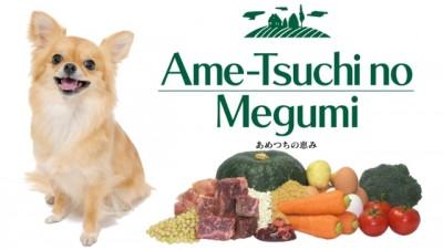ametuchi-top